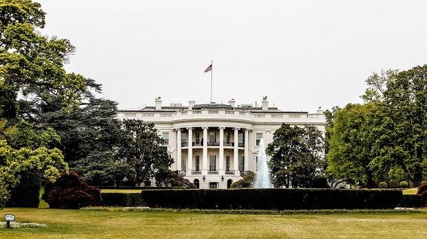 Washington DC ferret ban