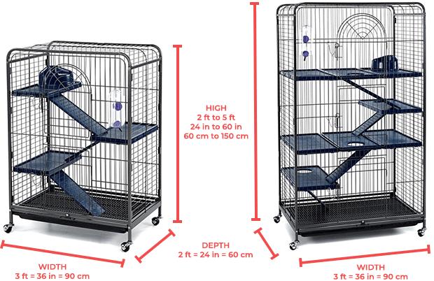 Minimal Ferret Cage Dimensions