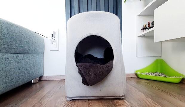 what do ferrets sleep in