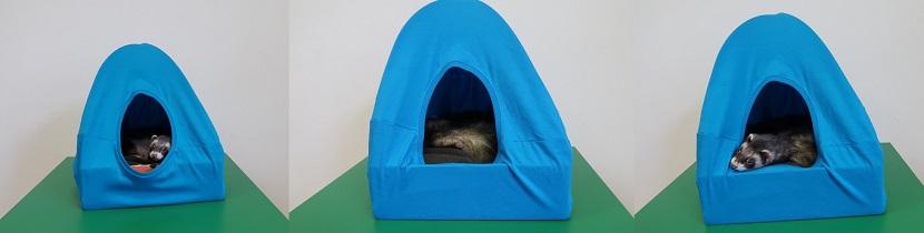 frida-tent