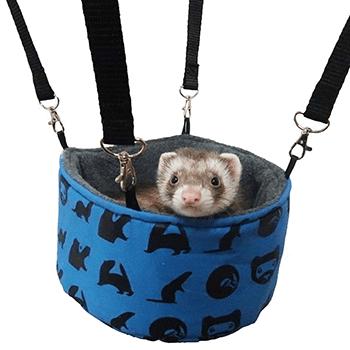 Bucket-Hammock-Ferrets
