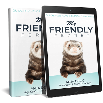 My Friendly Ferret Ebook Shop