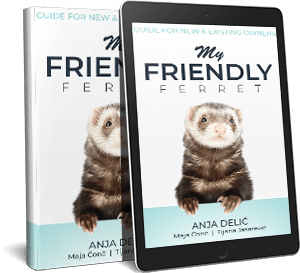 My Friendly Ferret Ebook Sidebar