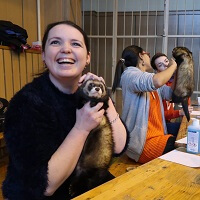 VIII. International Ferret Show In Budapest Judges