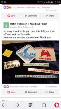 friendly ferret testimonial 22