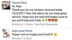 friendly ferret testimonial 39