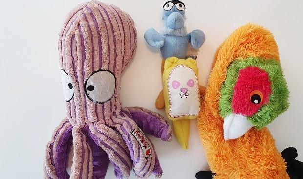 Ferret Cage Toys
