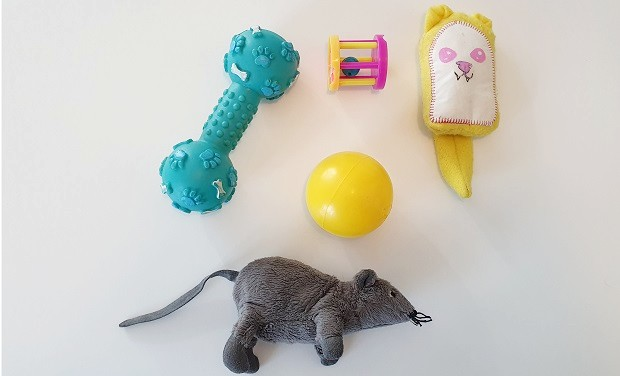 Ferret Safe Toys Without Small Parts