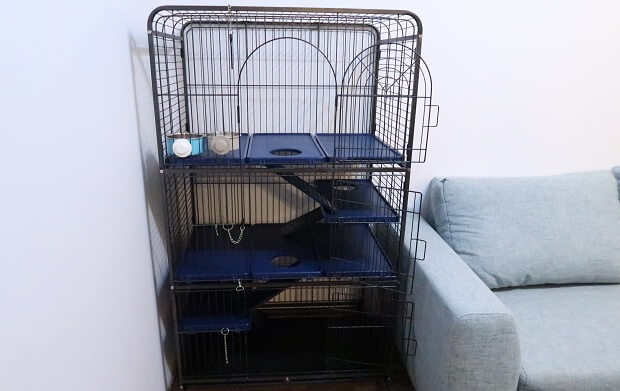 How Much Does A Ferret Cage Cost