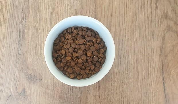 ferret food cost