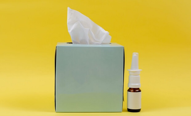 ferret allergy symptoms