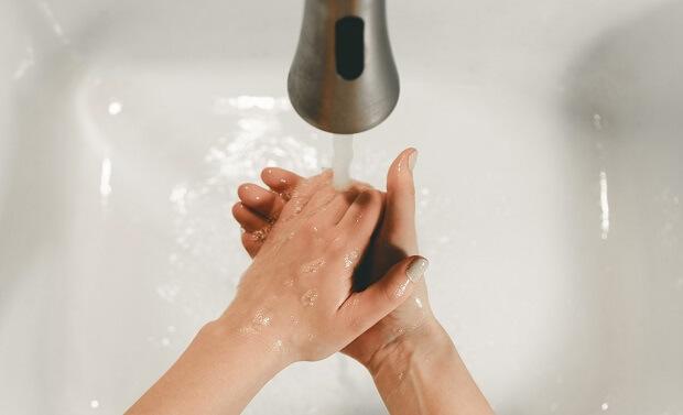 wash your hands after handling ferret