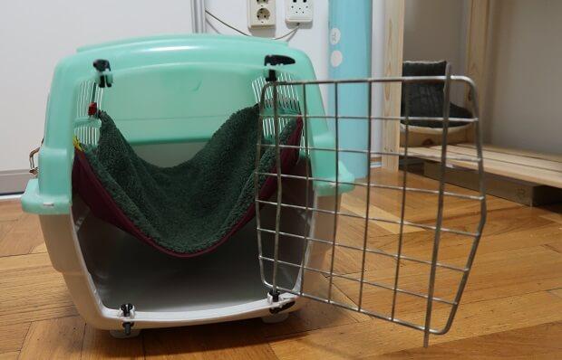 ferret transporter with hammock